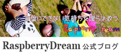 RaspberryDream blog